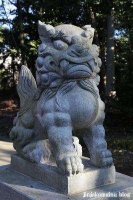 久伊豆神社(蓮田市井沼)9
