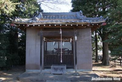 稲荷神社(蓮田市根金)3