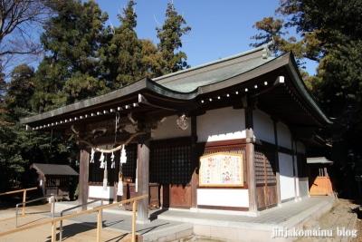 氷川神社(北足立郡伊奈町本町)9