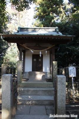 氷川神社(北足立郡伊奈町本町)17