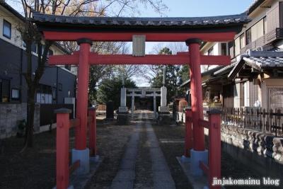 須賀神社(蓮田市上)5