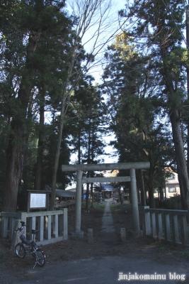 久伊豆神社(蓮田市閏戸)1
