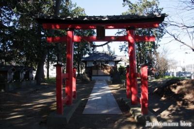 久伊豆神社(蓮田市川島)6