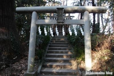 春日部八幡神社(春日部市粕壁)28
