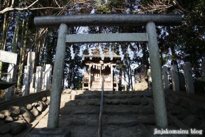 春日部八幡神社(春日部市粕壁)40