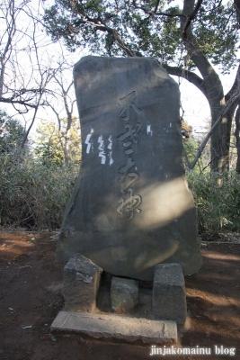 浅間神社(春日部市粕壁)4