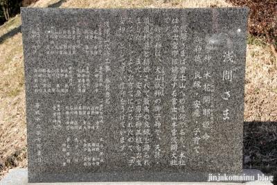 雷電社(春日部市梅田)14