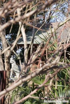 碇神社(春日部市粕壁東)4