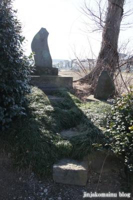 香取神社(春日部市上大増新田)12