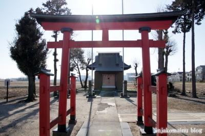 香取神社(春日部市上大増新田)3
