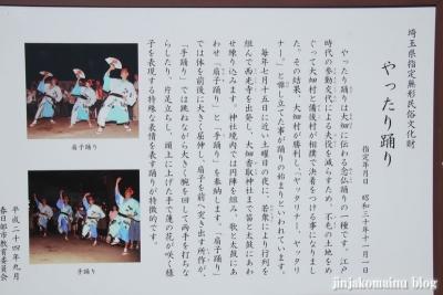 香取神社(春日部市大畑)3
