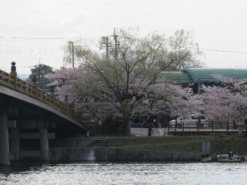 三井寺 (10)