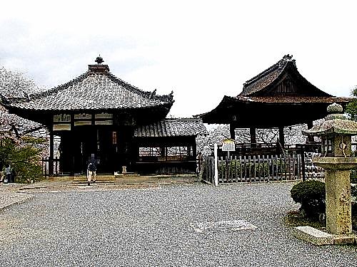 三井寺 (48)