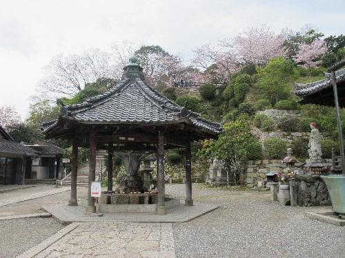 三井寺 (49)
