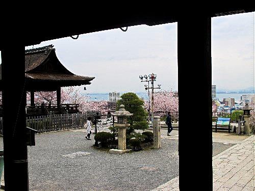 三井寺 (77)