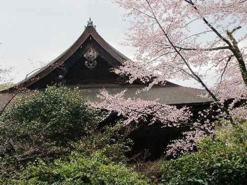 三井寺 (121)