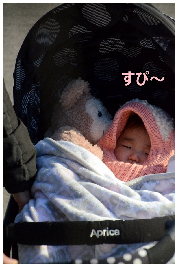 DSC_1802すぴ~