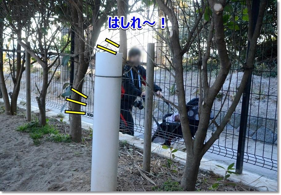 DSC_1809走れ~