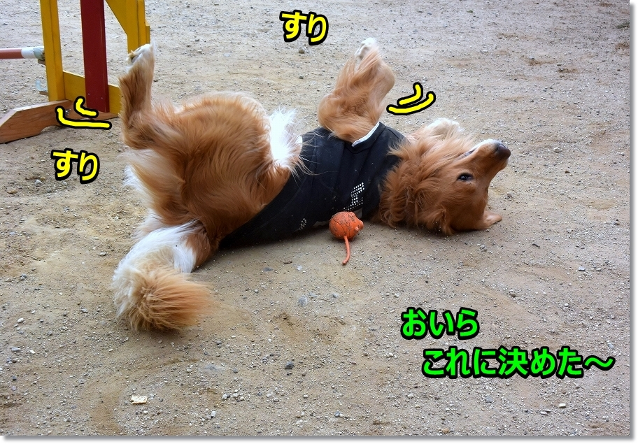 DSC_6083すりすり~