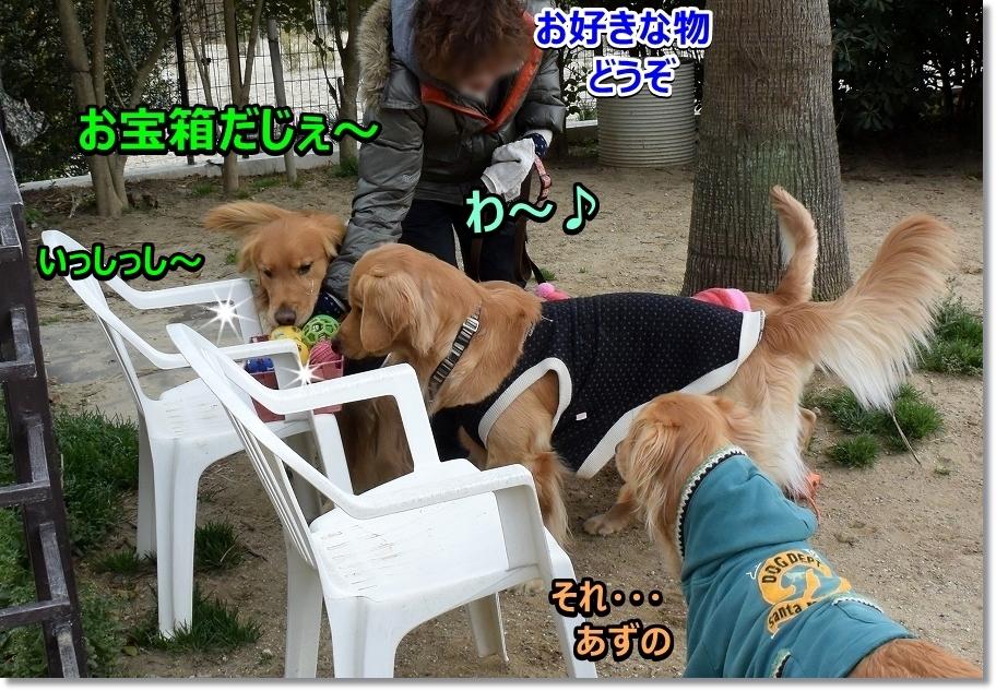 DSC_6090わ~お宝箱