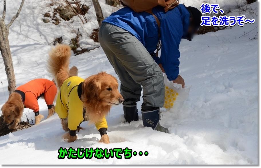 DSC_2731後で足を清潔にする為に雪を