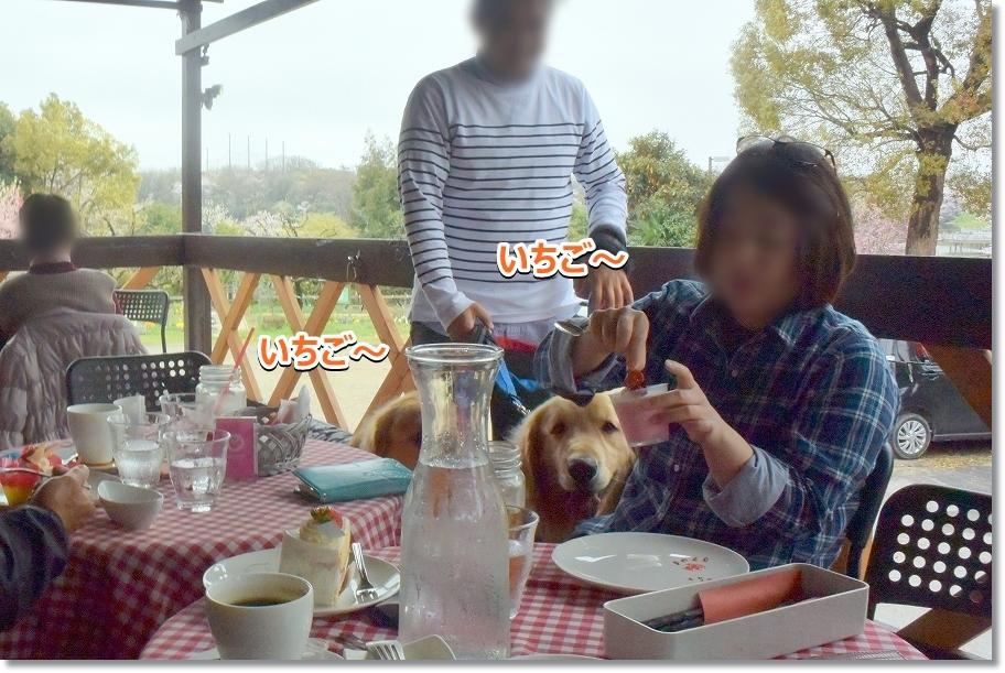 DSC_7257じ~