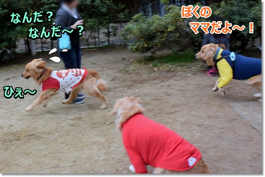 DSC_7365 ひぇ~