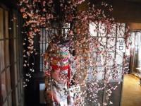 千厩雛祭り10回記念2017-02-15重箱石009