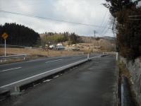 2017-02-25しろぷーうさぎ02