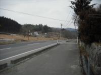 2017-03-02しろぷーうさぎ02