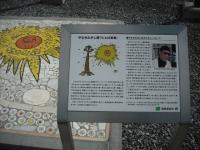 2017-02-26陸前高田市奇跡の一本松034