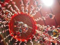 千厩雛祭り10回記念2017-02-15重箱石158