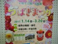 2017-02-27大船渡椿祭り170