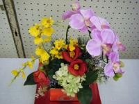2017-02-27大船渡椿祭り181