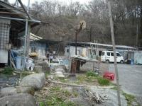 2017-04-08しろぷーうさぎ05