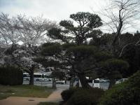 2017-04-19重箱石064