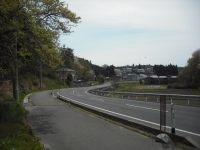 2017-05-04しろぷーうさぎ01