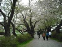 2017-05-05展勝地009
