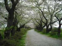 2017-05-05展勝地035