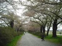 2017-05-05展勝地052