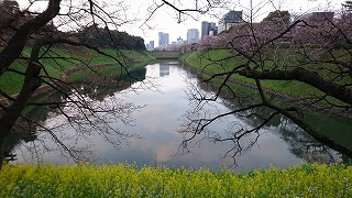 DSC_0089東京