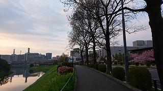 DSC_0093東京
