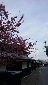 kiyotakie_0171.jpg