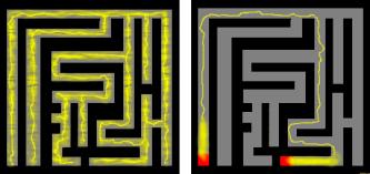 Slime_mold_solves_maze.png