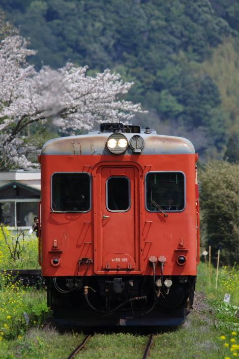 2017年04月15日 小湊 いすみ_9045