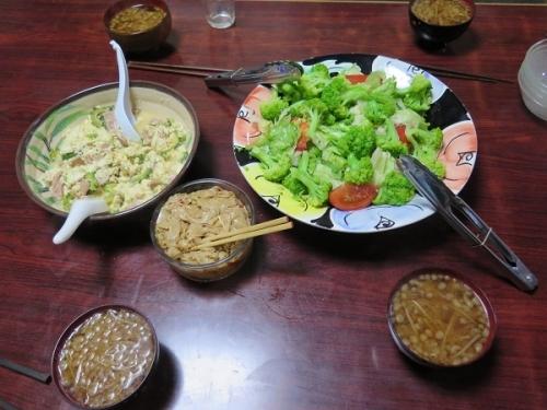 ゴーヤちゃんぷるー、グリーンサラダ、モヤシと揚げ玉の味噌汁