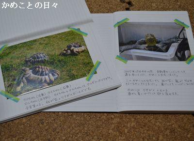 DSC_0836-k.jpg