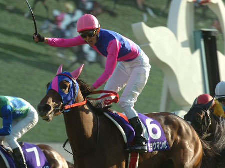 【競馬引退】メイショウマンボ、ラストランの鞍上は小牧騎手に