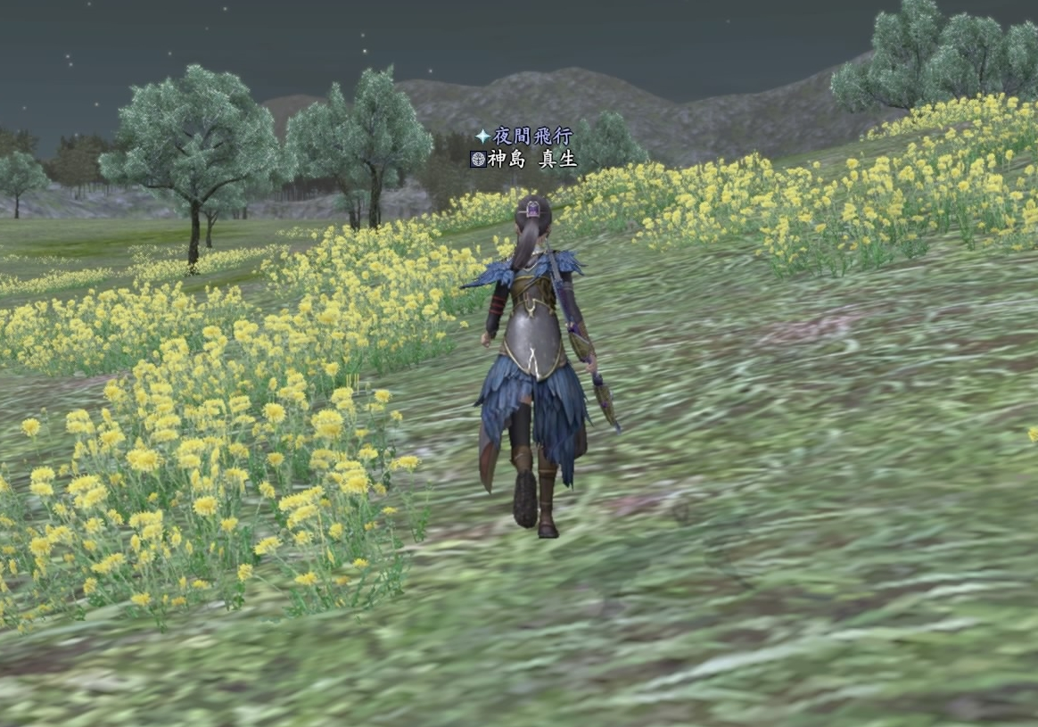 真田庄の花