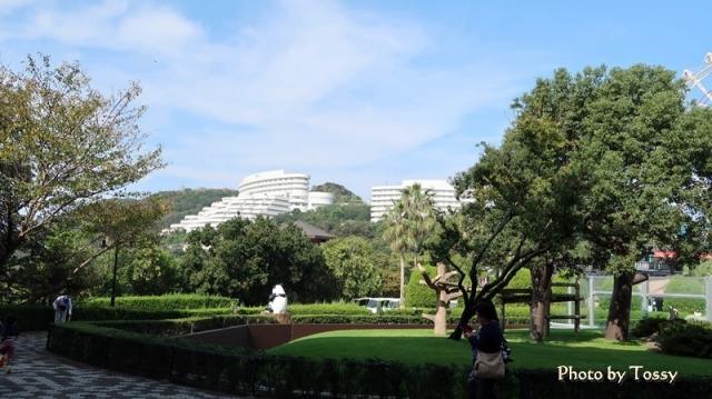 パンダ屋外運動場 ホテル